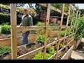 The Best BackYard Farming Channels Ever!