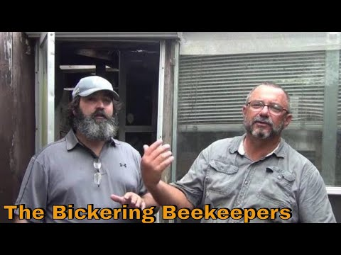 JP & Schawee Tackle A Mess Of Bees!