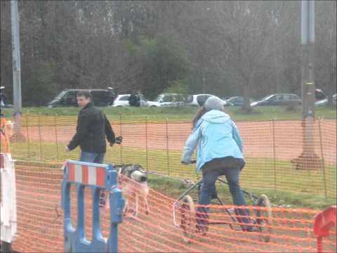 AMCUK Fun Day April 2012