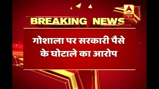 Chhattisgarh: Government granted fund of Rs 93 lakh to shelter where 200 cows died - ABPNEWSTV