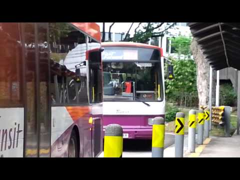 [SBS Transit][Volvo B10M][DM] SBS893R on 151e