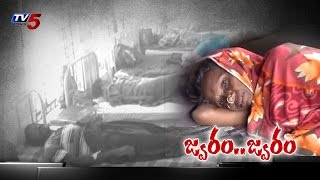 Viral Diseases Spread in Telangana Districts : TV5 News - TV5NEWSCHANNEL