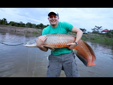 Amazon River Monster Project - Smarter Every Day 147