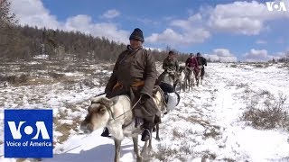 Mongolian Reindeer Herders Live the Simple Life - VOAVIDEO