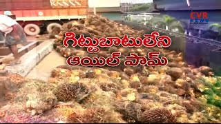 Oil Palm Farmers Facing Problems with Lack of Minimum Cost Price in West Godavari Dist | Raithe Raju - CVRNEWSOFFICIAL