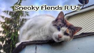 Royalty Free :Sneaky Fiends R Us