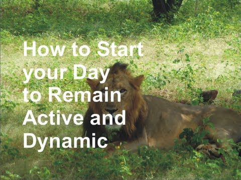 How to Start your Day to Remain Active and Dynamic