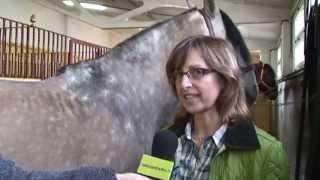 Los caballos no entienden de placebos