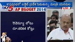 AP Budget 2014 | Welfare of Women and Child Development : TV5 News - TV5NEWSCHANNEL