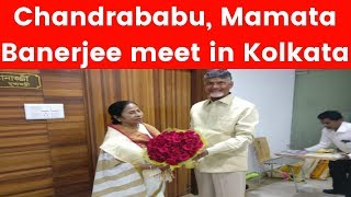 Chandrababu Naidu addresses media post Mamata Banerjee meet - NEWSXLIVE