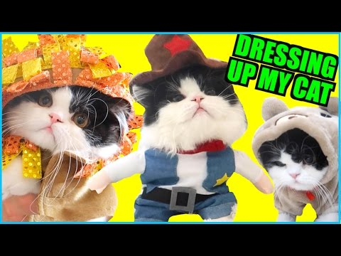 DRESSING UP MY CAT!