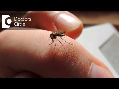 What causes joint pain & stiffnes post Chikungunya with normal RA factor?-Dr. Surekha Tiwari