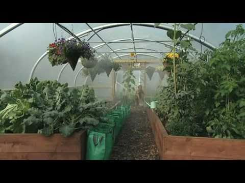 Water, water everywhere in the Polytunnel!