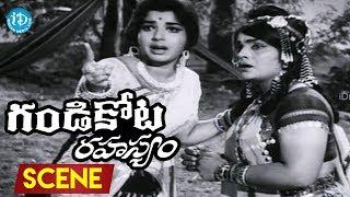Gandikota Rahasyam Movie Scenes - Hemalatha Misunderstands NT Rama Rao | Allu Ramalingaiah - IDREAMMOVIES