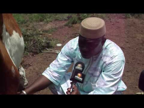 interviews1 bakary togola africable 24082013