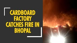 Cardboard factory catches fire in Bhopal, Madhya Pradesh - ZEENEWS