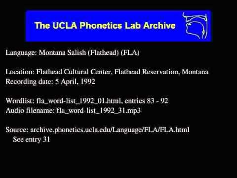 Flathead audio: fla_word-list_1992_31