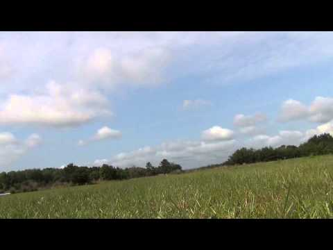 Rc planes and Cams in the grass