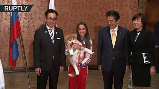 'Victory' puppy for gold: Russian figure-skater Zagitova gets Akita dog from Japan - RUSSIATODAY