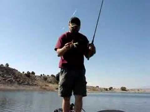 Spinner Baits and Pitchin Bugs