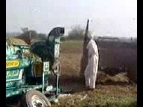 Groundnut Threshing At Malik Agri. Farm Tamman. Tehsil Talagang, Chakwal.