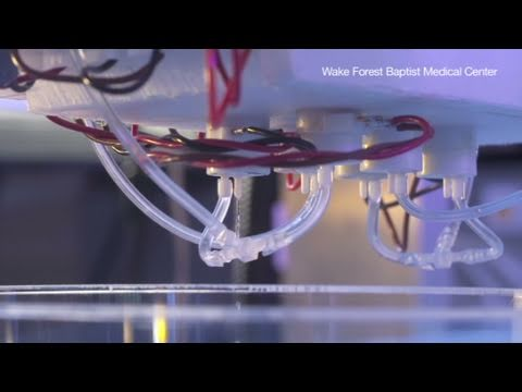 CNN: 3-D printer produces organs