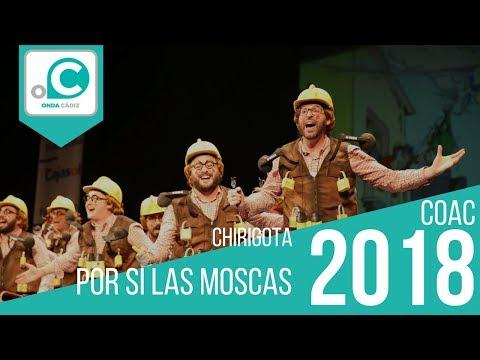La agrupación Por si las moscas llega al COAC 2018 en la modalidad de Chirigotas. En años anteriores (2017) concursaron en el Teatro Falla como Ya no salgo más, consiguiendo una clasificación en el concurso de Preliminares.