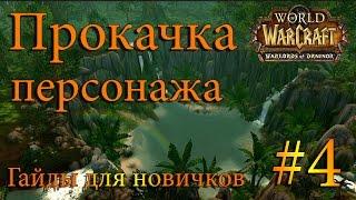 Советы по прокачке персонажа в World of Warcraft