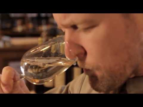 The Palate 2013. Oddbins' search for the UK's finest wine taster is back.