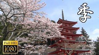 Hay cuatro estaciones en Japón.