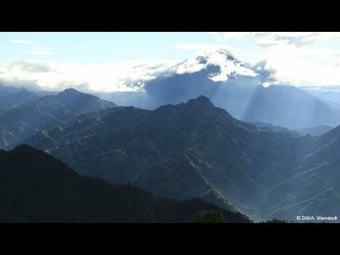 Kaffee anbauen am Tacana Vulkan in Mexiko | Global Ideas