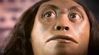 New Evidence Sheds Light on 'Hobbit' Demise - WSJDIGITALNETWORK