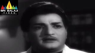 Jeevitha Chakram Movie NTR and Nagaiah Emotional Scene    NTR, Vanisri, Sharada - SRIBALAJIMOVIES