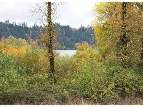 Homes for Sale - 2XX Barlow Point Rd Longview WA 98632 - Robert Lund