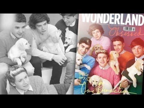 ¡One Direction Posan Con Labradores!