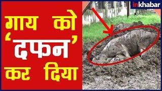 Nagar Nigam के अधिकारीयों का कारनामा , रीवा(मध्य प्रदेश) में नगर निगम परिसर के दफनाया दिए गए 8 शव - ITVNEWSINDIA