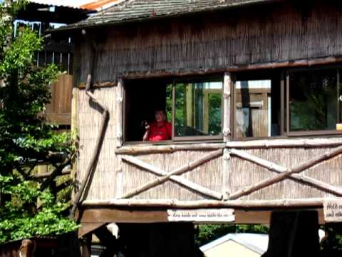 Choo Choo woman operating the mine train!