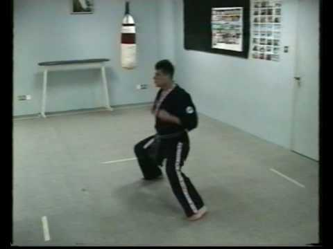Okinawa-Te  Karate-do third video