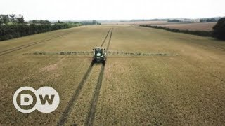 Brexit: UK farmers have mixed emotions | DW English - DEUTSCHEWELLEENGLISH