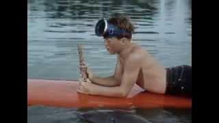 21 Flipper auf Schatzsuche