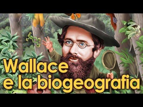 Wallace e la biogeografia