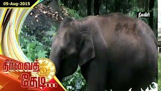 Thervai Thedi 05-08-2015 – Puthiya Thalaimurai Tv Show