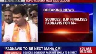 BJP finalises Devendra Fadnavis for Maharashtra CM - NEWSXLIVE