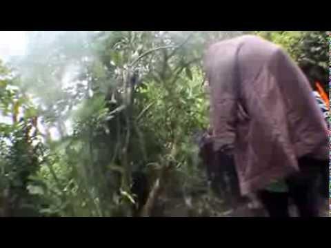 Gunung gede-Pangrango JK X Kopet