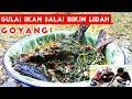 Kuliner Khas Riau Gulai Ikan Patin