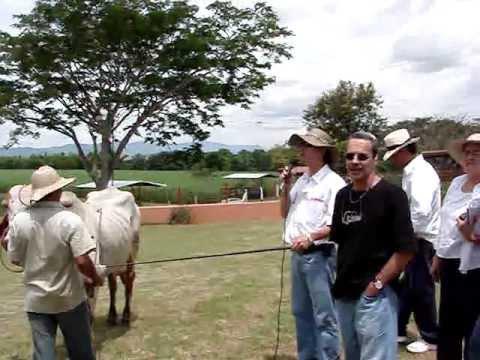 Curso de Julgamento, 2007, Cartago, Colômbia, El Empedrado