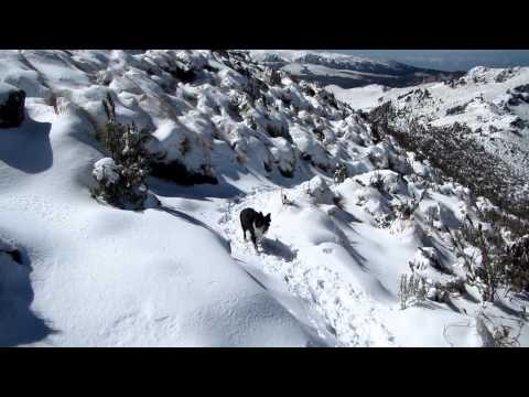 23 kms de Trekking desde Paso de Cortés hasta el primer portillo.