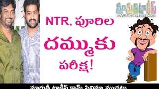 Real Test For Jr NTR And Puri Jagannath Stamina - MARUTHITALKIES1