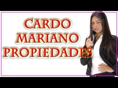 Cardo Mariano Propiedades | Descubre las Propiedades y Beneficos del Cardo Mariano