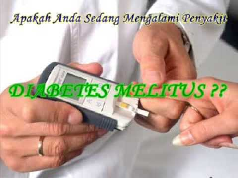CARA MENGOBATI DIABETES MELITUS | OBAT HERBAL DIABETES MELITUS